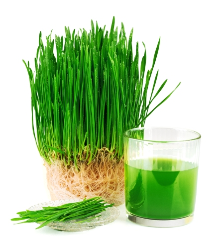 JUICING TO VIEW PAGE - CLICK HERE